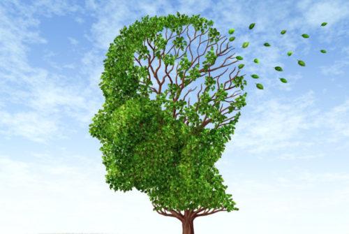 neuorologie-jena